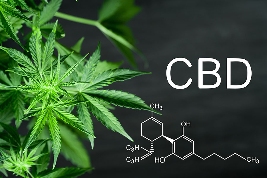 Best-of-Breed Hemp/CBD Producers