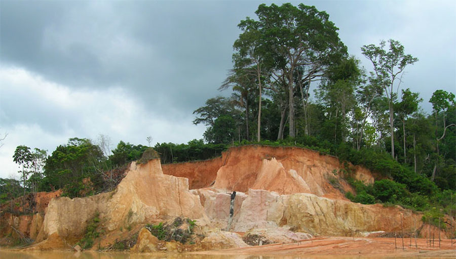 Gold Miner Reports Progress at Northern Brazil Project