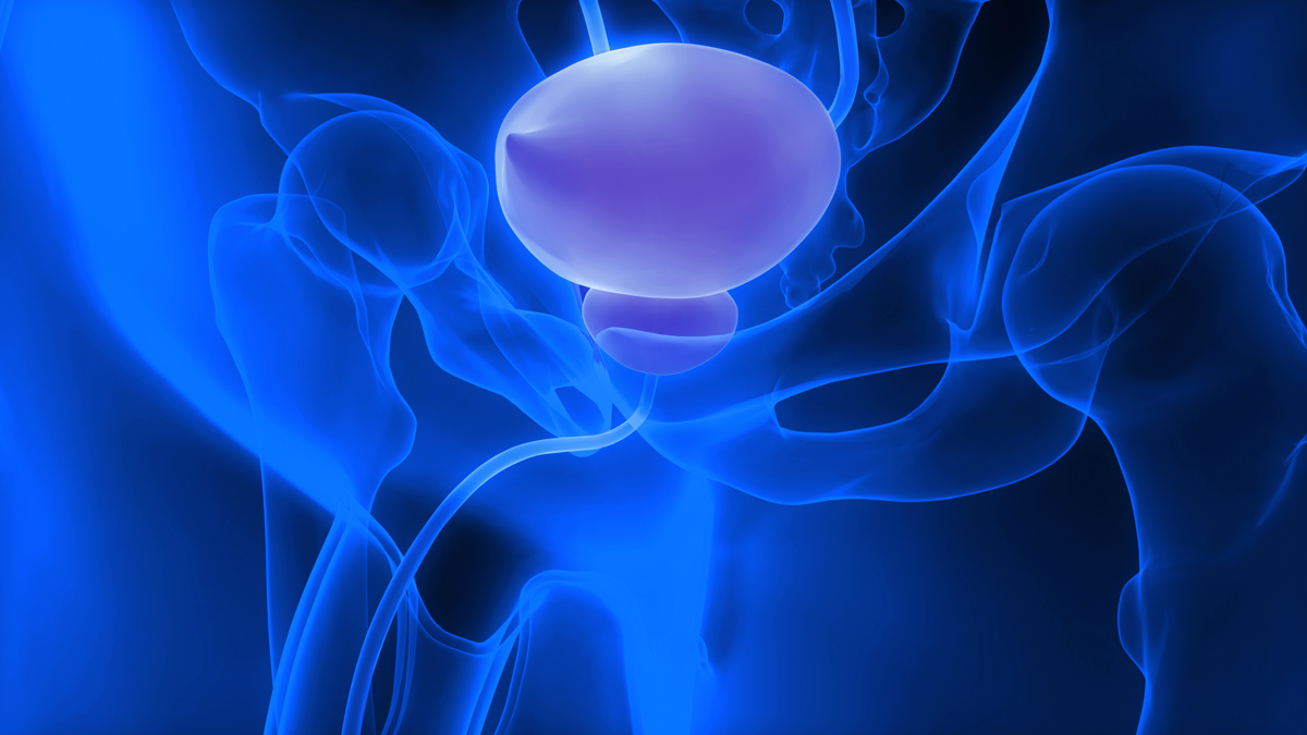 Imagin Medical Poised for Breakout with Bladder Cancer Detection Device